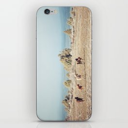 Oregon Wilderness Horses iPhone Skin