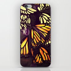 The Monarch (variation) iPhone & iPod Skin
