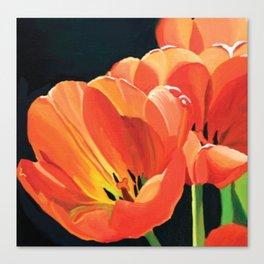 Princess Irene Tulips III Canvas Print