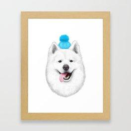 Samoyed Framed Art Print