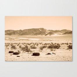 Desolation Canvas Print