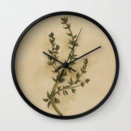Thyme Wall Clock