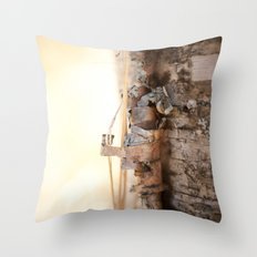 Molting Birch Throw Pillow
