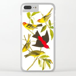 Louisiana Tanager and Scarlet Tanager Clear iPhone Case