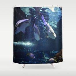 Shark Party Shower Curtain