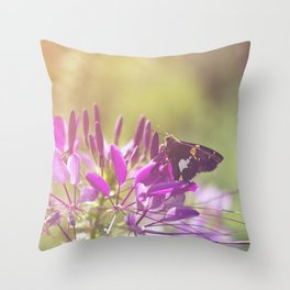 Spider Flower in Glory Light With Moth Botanical / Nature Photo Throw Pillow