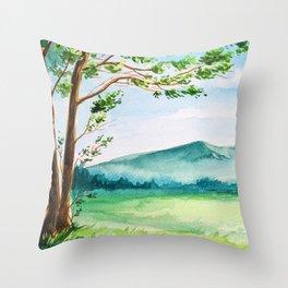 Spring Scenery #11 Throw Pillow
