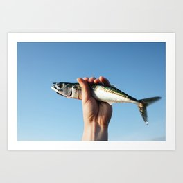 Mackerel in a Hand in the Sky Art Print