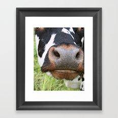 Oh la vache! Framed Art Print