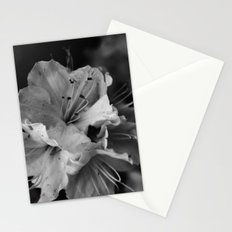Timeless Black & White  Stationery Cards