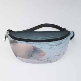 Maldives Wildlife Coral Fish In Turquoise sea Fanny Pack