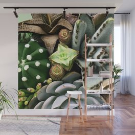 Wild and Wooly Succulent Garden Wall Mural
