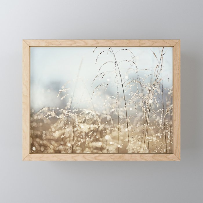 Gold Blue Sparkle Nature Photography, Dew Drop Grass Brown, Morning Water Dewdrops, Magical Bokeh Framed Mini Art Print