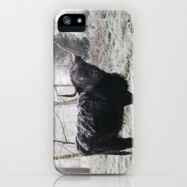 Black highland cow covered in frost on a winters morning. Norfolk, UK. iPhone Case