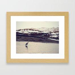 Heron Blue: The Great Framed Art Print