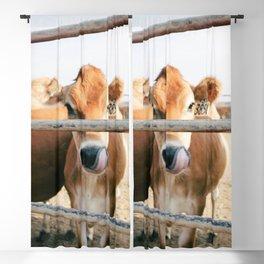 Tan Cattle Blackout Curtain