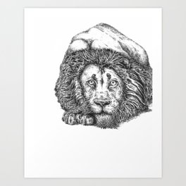 Playing or Pouncing Art Print