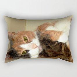 Want to take me home? Rectangular Pillow
