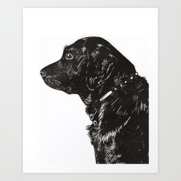Black Lab Print Art Print