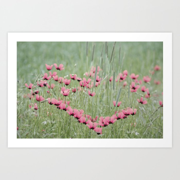 A Heart of Poppy  Art Print