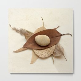Natural Symbols - Stone and Leaves Metal Print