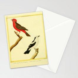 093 gobe mouche (Fr)2 Stationery Cards