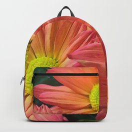 Cream and Pink Flower Close Up Backpack