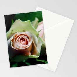 Whispering secrets Stationery Cards