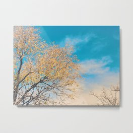 327 | west texas Metal Print