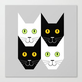 Black cat, white cat Canvas Print