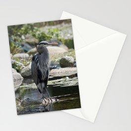 lagoon landing Stationery Cards