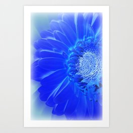 electric blue gerbera Art Print