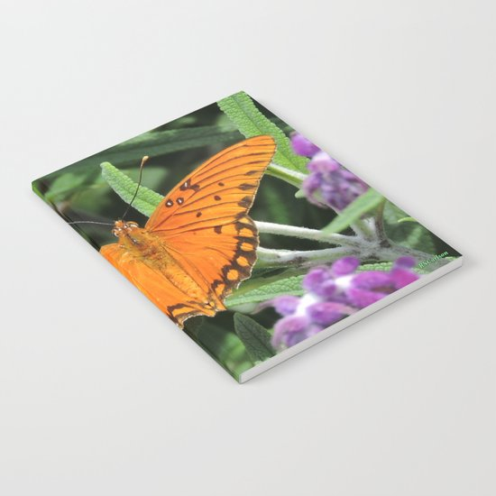 A Gulf Fritillary Shows Wear and Tear Notebook