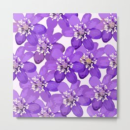 Purple wildflowers on a white background - spring atmosphere Metal Print