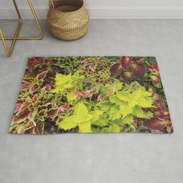 Foliage Fiesta With A Touch Of Begonia Rug