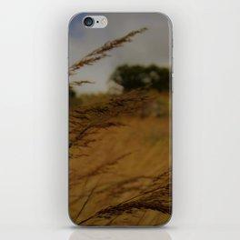 Amber Waves iPhone Skin