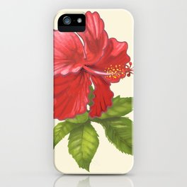 Pink Tropical Hibiscus Flower Painting iPhone Case