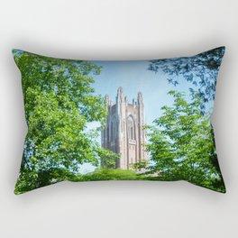 Framed Galen Stone Rectangular Pillow
