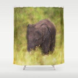 Elephant Baby Shower Curtain