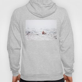 Two Winter Horses Hoody