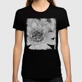 Chrysanthemum Flower in black and white - Floral Photography #Society6 T-shirt