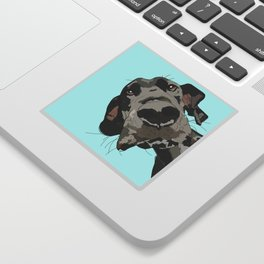 Great Dane in your face (teal) Sticker