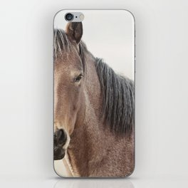 Horse Photograph, Soft Color iPhone Skin