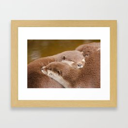Cuddling Up Together - Otterly Cute Framed Art Print