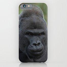 Silverback Stare iPhone Case