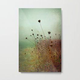 A Dense Fog Surrounded Her Metal Print