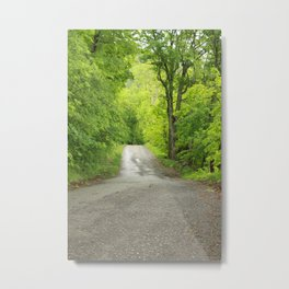 After the Rain in Spring Metal Print