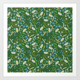 Chamomile and blue chicory among herbs and wheat Art Print