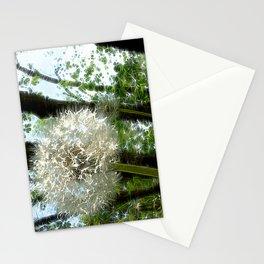 Wish Masheen Stationery Cards