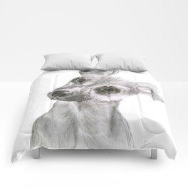 Chihuahua Dog Comforters